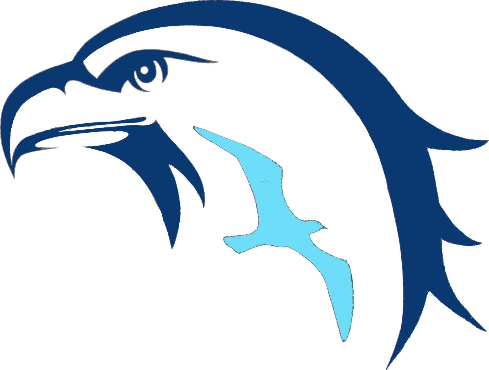 Logo sul piè di pagina: VIAREGGIOMARE.COM